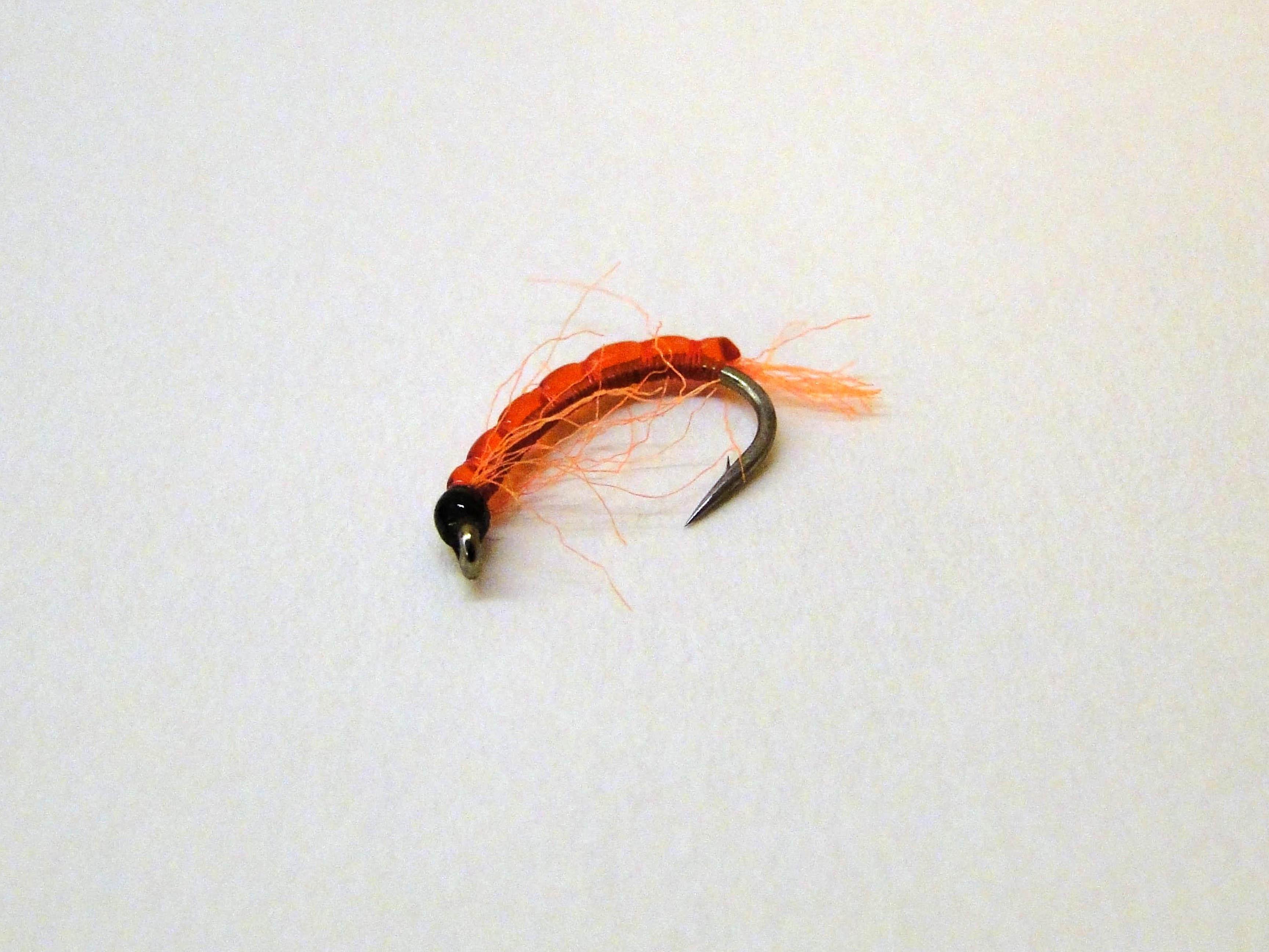 мотыль для рыбалки это личинка кого