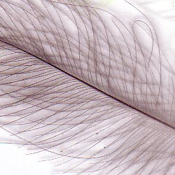 Картинка по адресу /media/products/petitjean/cdcfeathers.jpg